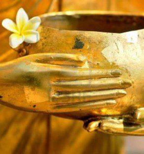 Plumeria on golden bowl